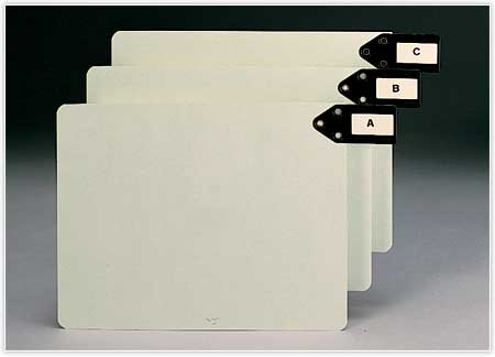 File organizer tabs